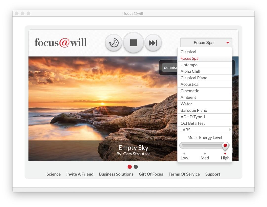 Flow-Erlebnis-Focus-Will