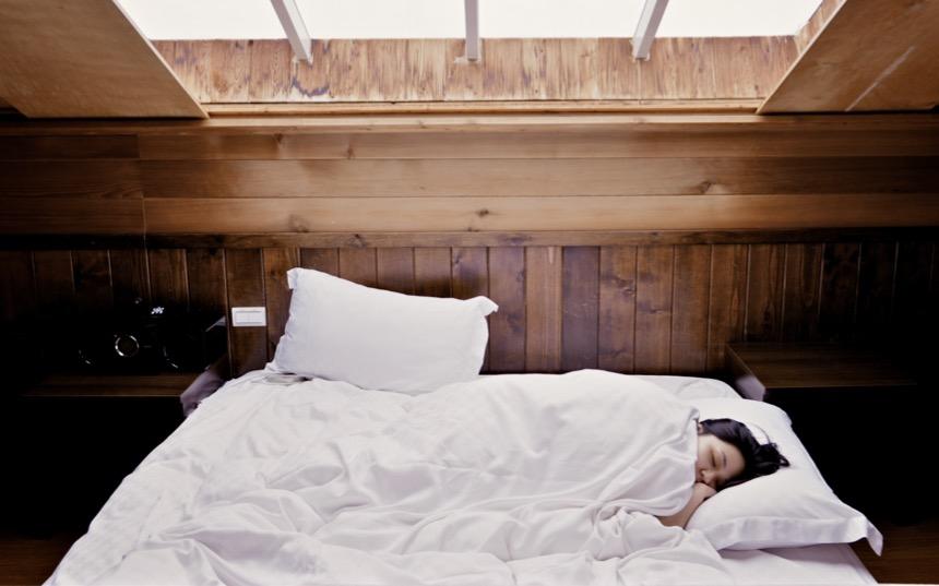 Elefant und Reiter - Kuscheliges Bett