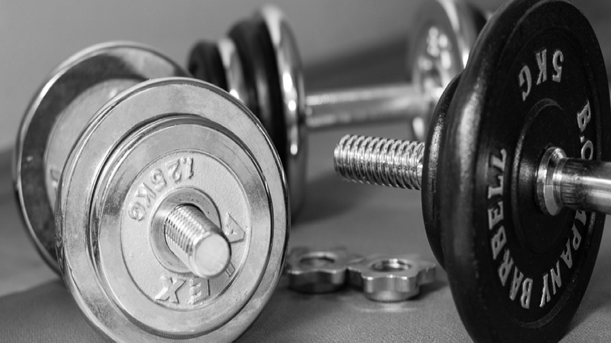 lyle mcdonald pdf bodybuilding.com