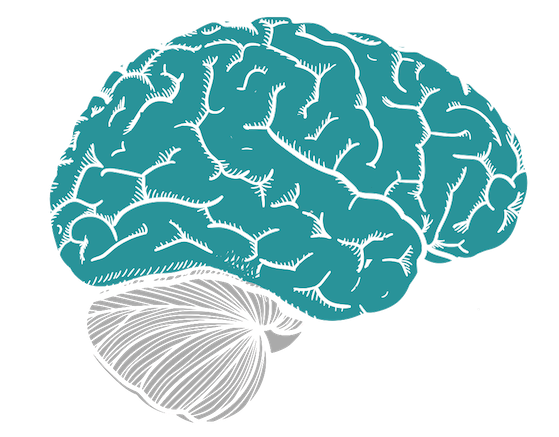 Selbstdisziplin lernen - Neocortex